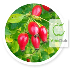 Vitamina C macese