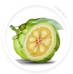 garcinia cambogia fruct figure shaper