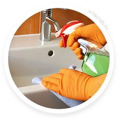produs bio curatenie pentru baie si diferite suprafete